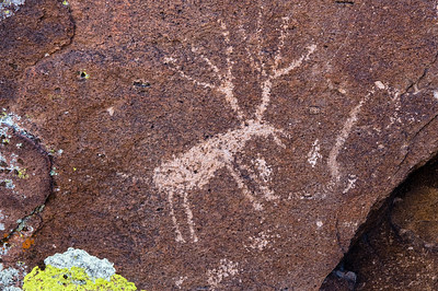 Petroglyphs, Irish Mountains, Hiko, Nevada