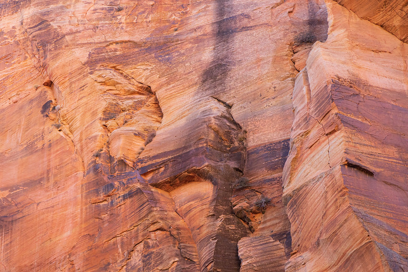 Zion, Angel's Landing - Canyon wall colors lit by setting sun