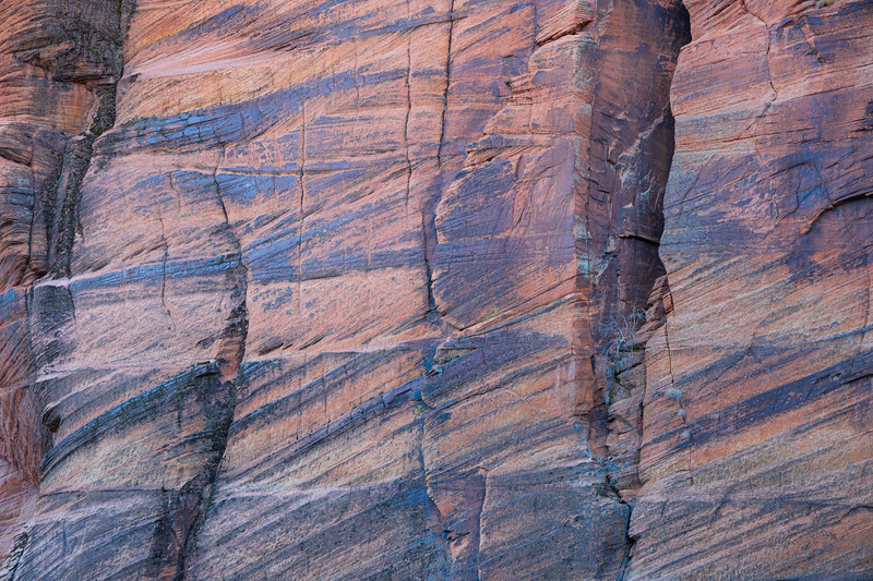 Zion, Angel's Landing - Colorful patterns in the wall