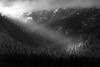 Snoqualmie Pass, Keechelus Lake - Sunbream breaking through storm clouds and illumating a leaning tree, black and white, closer