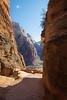 Zion, Angel's Landing - Turning the corner into Refridgerator Canyon