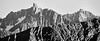 Harts Pass, Slate Peak - Overlapping ridges and summits, black and white