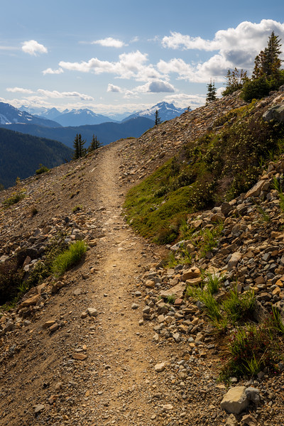 Harts Pass, Windy Pass - Trail approaching a corner with a great view
