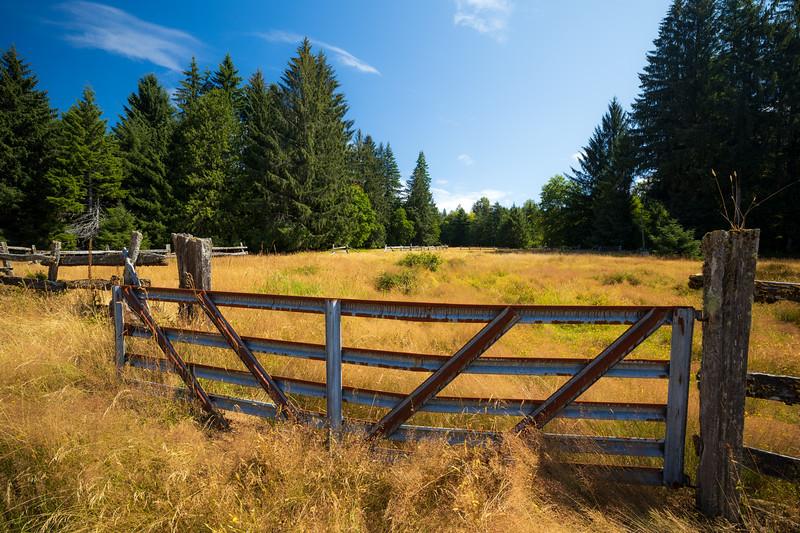 Quinault, Rainforest - Gate to field at Kestner Homestead