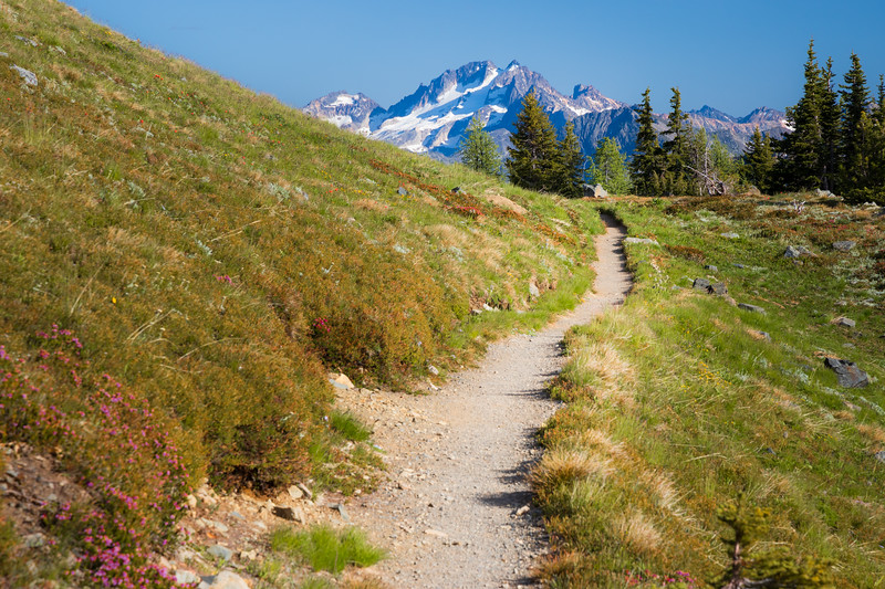 Harts Pass, Windy Pass - Trail winding south towards the trailhead