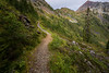 Whatcom, Winchester Mountain - Trail leading towards Low Pass, High Pass, and Mt. Larrabee
