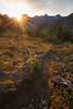 Whatcom, Winchester Mountain - Warm sun illuminating trail in meadow