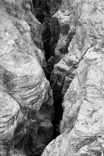 Zion, Canyon Overlook - View into deep slot canyon from above, black and white