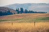 Methow, Winthrop - Wire fence in front of endless meadows