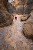 Zion, Clear Creek - Woman hiking through ice patches