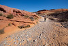 Valley of Fire, Pink Canyon - Woman hiking through wash