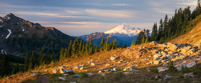 Whatcom, Winchester Mountain - Mt. Baker and meadow on trail just after sunrise