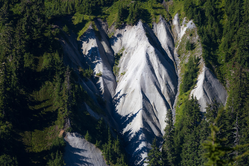 Whatcom, Artist Point - Steep rocky hillside surrounded by forest