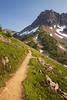 North Cascades, Cascade Pass - Trail approaching the pass beneath Mixup peak