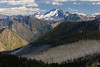 Harts Pass, Windy Pass - Layers of forest fire and living forest in front of distant peaks