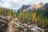 Rainy Pass, Cutthroat Pass - Clearing with boulders in front of larch and Porcupine Peak