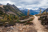 Rainy Pass, Cutthroat Pass - Trail leading to valley view with two larch trees, closer in