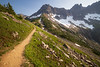 North Cascades, Cascade Pass - Trail in final basin before the pass, Mixup and Triplets Peaks visible