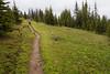 Pasayten, Horseshoe Basin - Hiker walking on muddy trail in the rain
