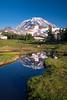 Rainier, Spray Park - Rainier reflected in a curvy tarn
