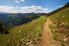 Harts Pass, Windy Pass - Pacific Crest Trail entering a large meadow