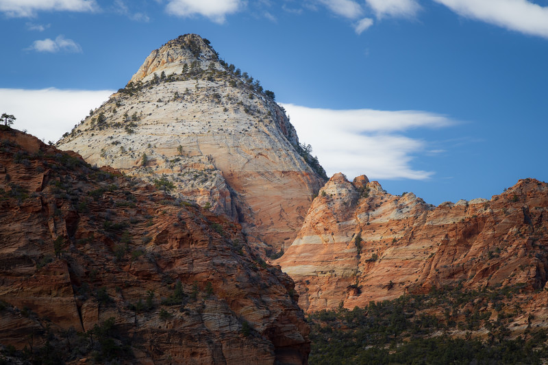 Zion, Canyon Overlook - Large white mountain near overlook
