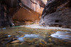 Zion, The Narrows - River flowing beneath large alcove