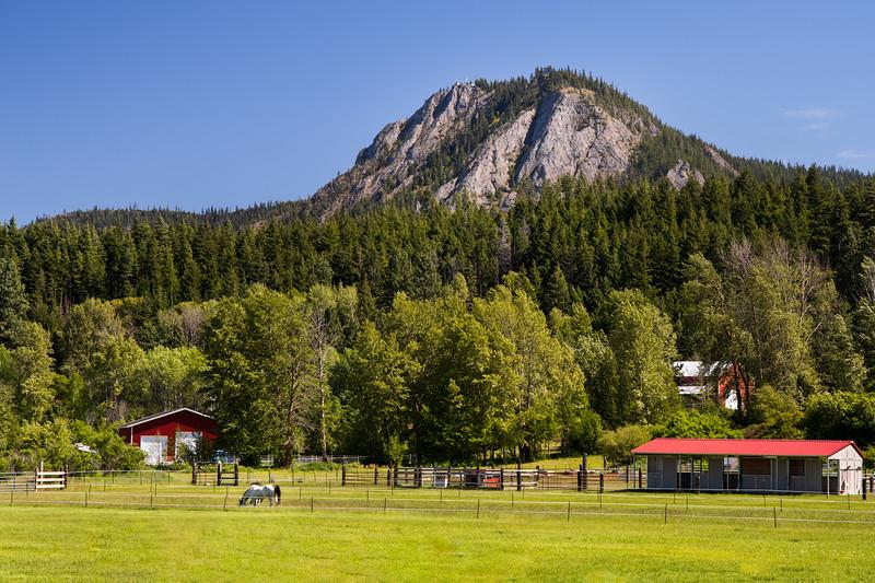 Kittitas, Iron Horse Trail - Horse and barn beneath Peoh Point