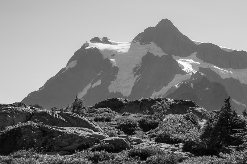 Whatcom, Artist Point - Meadows and Mt. Shuksan, black and white