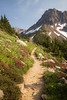 North Cascades, Cascade Pass - Trail passing pink and white flowers near the pass, vertical