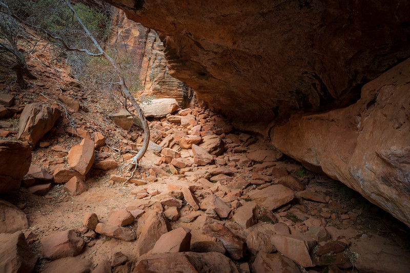 Zion, Canyon Overlook - View from inside a cave of old wash