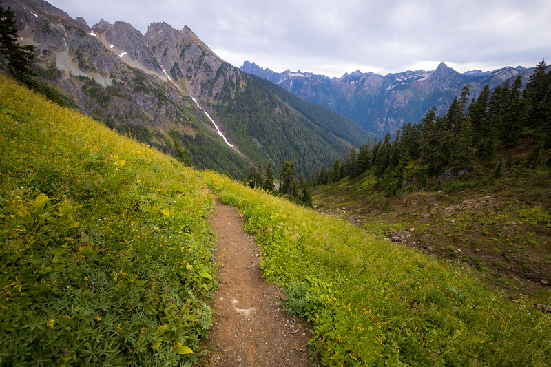Whatcom, Winchester Mountain - Trail leading towards Silesia Creek and High Pass
