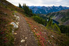 Whatcom, Winchester Mountain - Trail with red bushes, lakes, and distant peaks