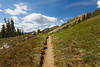 Harts Pass, Windy Pass - Pacific Crest Trail heading north beneath the Slate Peak Lookout