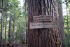 Whatcom, Excelsior - Trail sign for Damfino Lakes, Canyon Ridge, and Boundary Way