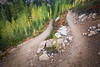 Rainy Pass, Cutthroat Pass - Bend in the trail with stand of larch behind