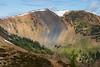 Harts Pass, Tatie Peak - Colorful hillside in full sun