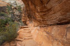 Zion, Canyon Overlook - Steps leading into corner under rock