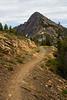 Harts Pass, Tatie Peak - Trail winding toward distant peak