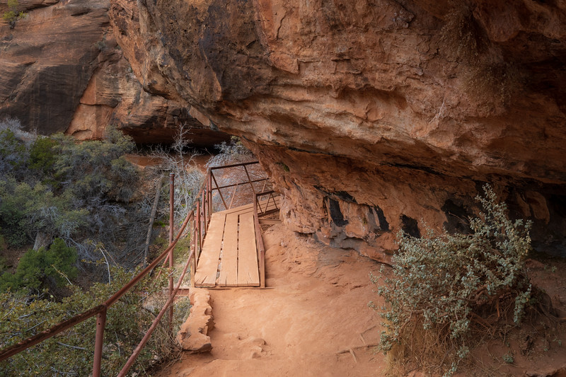 Zion, Canyon Overlook - Trail entering a large cave on boardwalk