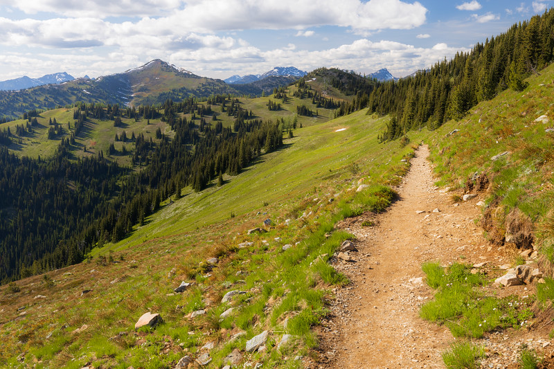 Harts Pass, Windy Pass - Pacific Crest Trail entering a large meadow and basin