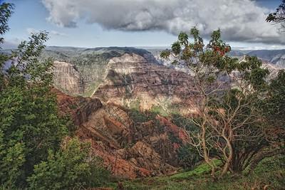 Waimea Canyon 24