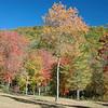Pasture in autumn, Georgia, USA.
