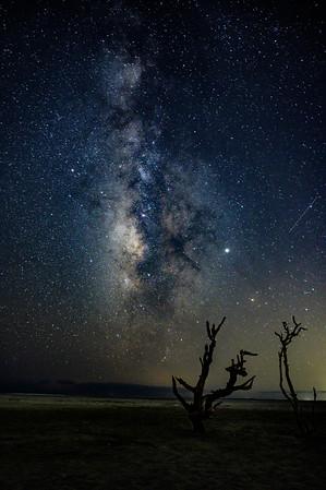 Starry Night Folly Beach