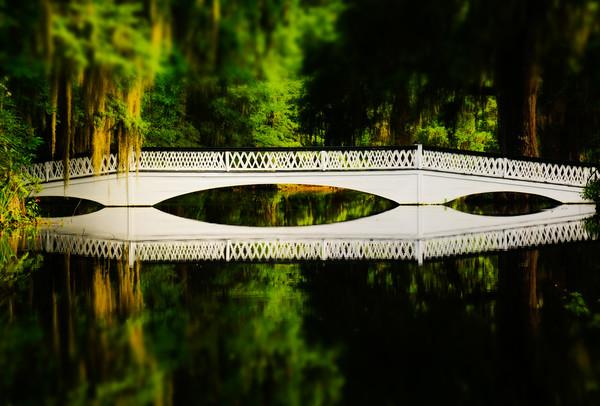 20150716-1127-DSC_7167-Charleston area-Edit