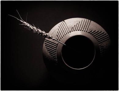 Clay Pot  07 30 12  015