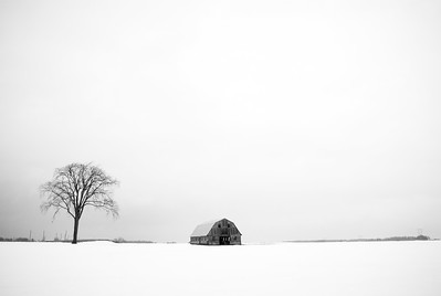 DrivingToWork;Ottawa Valley;Minimalist;White;Trees;Barn