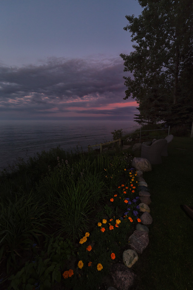 Flowers After Sunset