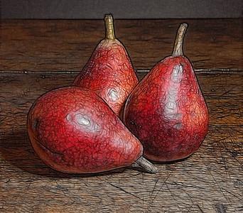 Bosc Pears  08 09 12  026