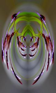 Blue Verbena composite 01 - Edit
